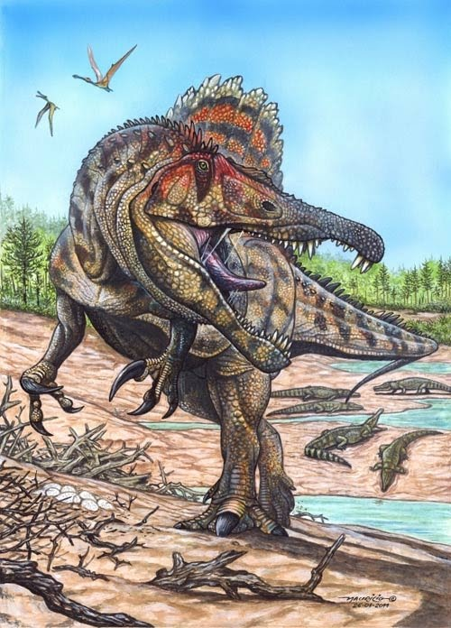 The Dinosaurs of Roland Tembo Oxalaia-dinosaurs-28286576-500-696