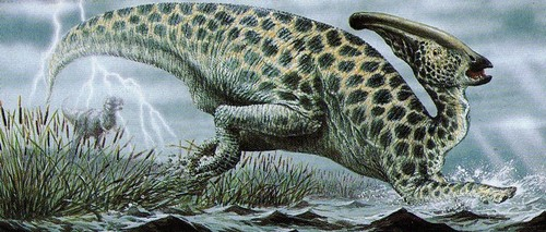 Dinosaurs wallpaper entitled Parasaurolophus