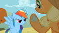 Rainbow Dash and Applejack - my-little-pony-friendship-is-magic screencap