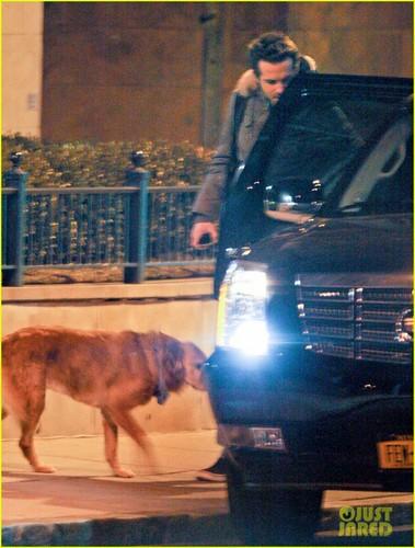 Ryan Reynolds & Baxter: Early Morning Walk