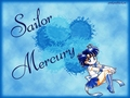 Sailor Mercury - sailor-mercury wallpaper