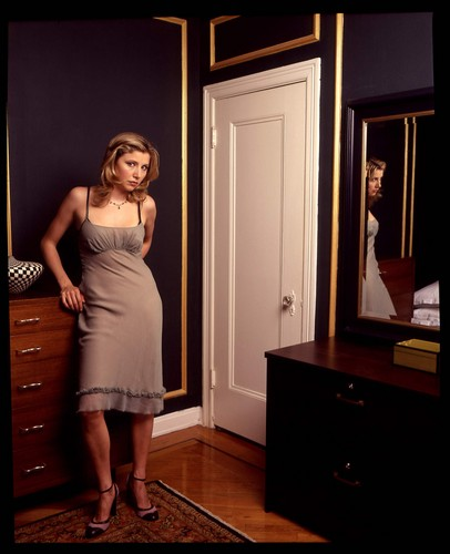 Sarah Chalke wallpaper containing a living room and a family room entitled Sarah Chalke