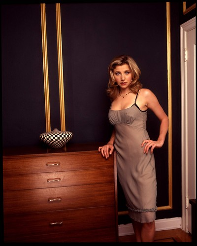 Sarah Chalke wallpaper containing a living room and a dressing table titled Sarah Chalke