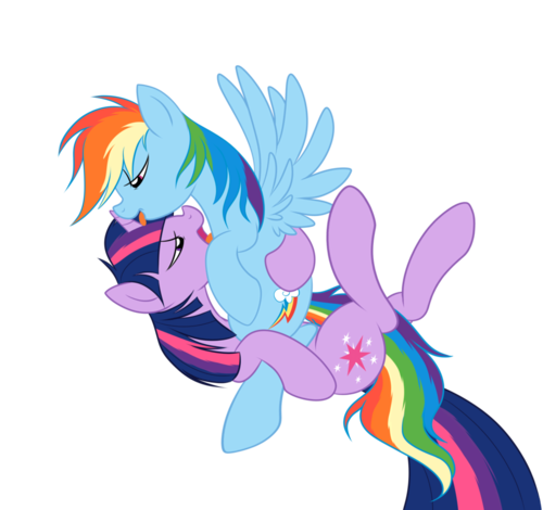 Saucy TwiDash