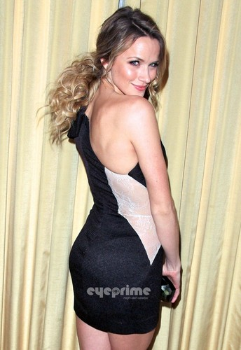 Shantel VanSanten वॉलपेपर probably with a bustier, बस्टीर and a leotard titled Shantel VanSanten: Forevermark & InStyle Golden Globe Event