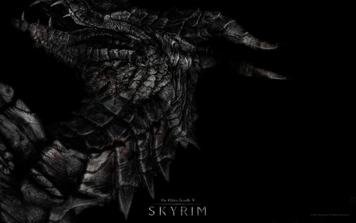 Elder Scrolls V : Skyrim images The Elder Scrolls V: Skyrim HD wallpaper and background photos