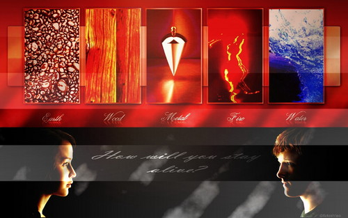 The Hunger Games wallpaper entitled The Hunger Games wallpaper