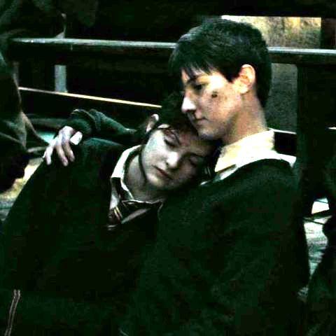 Unidentified Hogwarts Gryffindor siblings during the Battle of Hogwarts