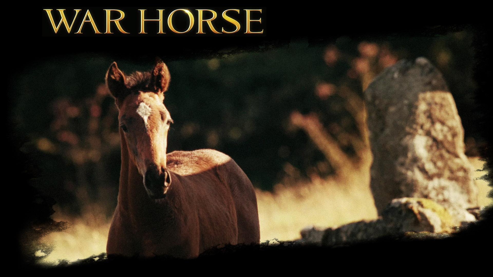 Essays on the movie war horse