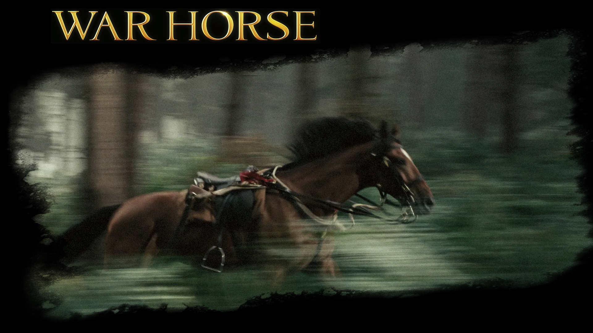 War Horse War Horse The Movie Wallpaper 28220280 Fanpop
