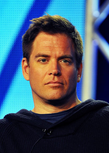 Winter TCA 2012 - michael-weatherly Photo