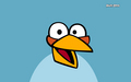 blue - angry-birds wallpaper
