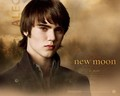 cameron bright - cameron-bright wallpaper