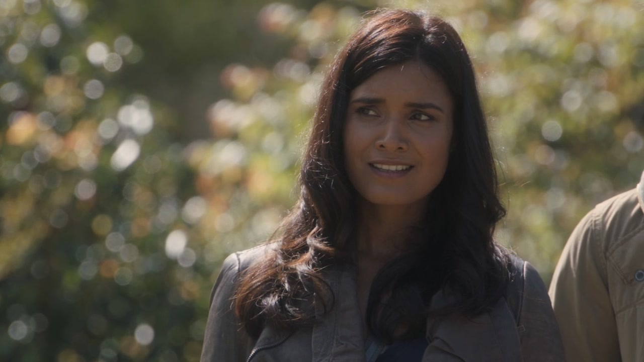 shelley conn wiki