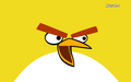 yellow - angry-birds wallpaper