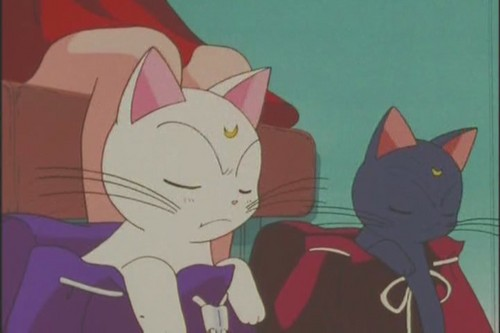 Bakugan and Sailor Moon! Hintergrund possibly with Anime titled Artemis and Luna