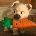 Bolt and Mr. Carrot!