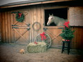 Country Christmas - horses photo