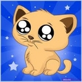 Cute Kitty - cartoon-animals photo