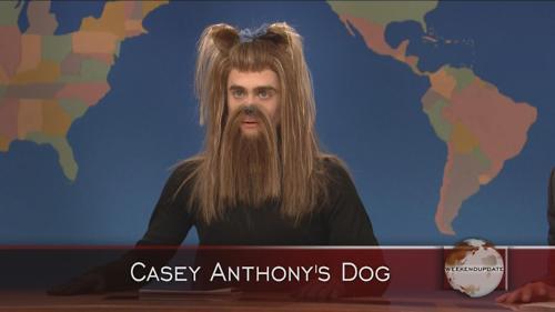 Dan as a dog