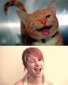 Hayley cute like a cat