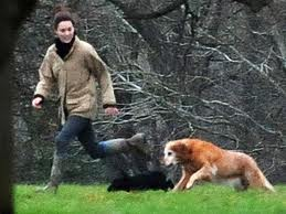 Kate playing with anjing
