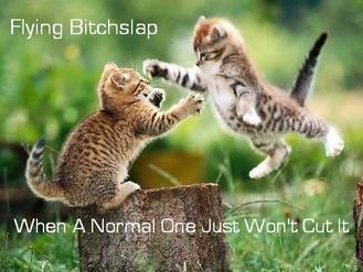 Kittys r awsomez!