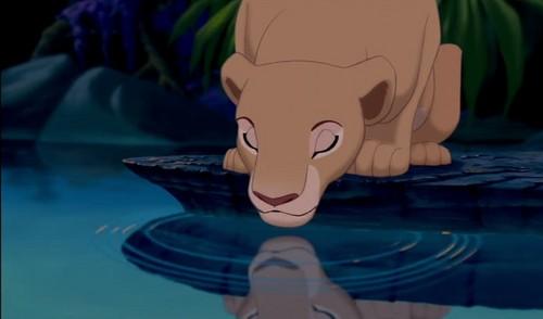 the lion king wallpaper called Nala
