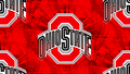 OHIO STATE RED BLOCK O