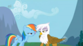 my-little-pony-friendship-is-magic - Rainbow Dash and Gilda screencap