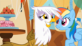 Rainbow Dash and Gilda - my-little-pony-friendship-is-magic screencap
