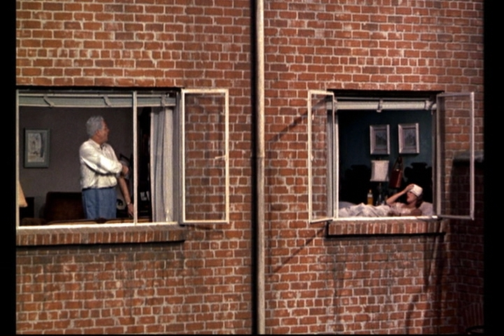 analysis and discusion on rear window The most common and least serious type of traumatic brain injury is called a concussion the word comes from the latin concutere, which means to shake violently.