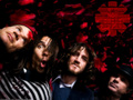 red-hot-chili-peppers - Red Hot Chili Peppers wallpaper