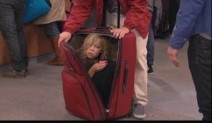 Sam in a luggage