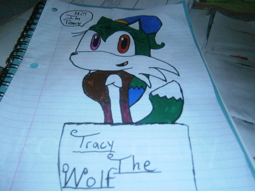 Tracy the wolf