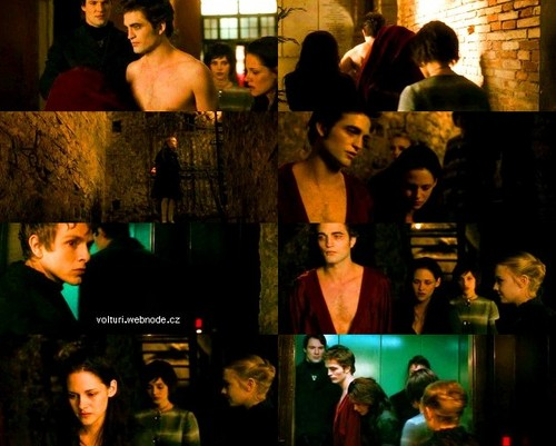 The Volturi wallpaper entitled Volturi picscam