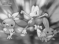 pokemon - Wallpaper wallpaper