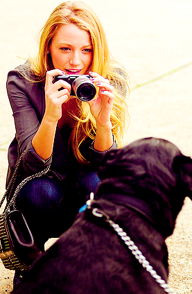 Photography Fan wallpaper titled blake lively
