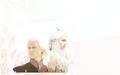 Dany & Viserys