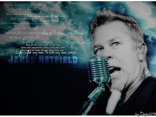 James Hetfield wallpaper probably with a concert and a guitarist titled james hetfield