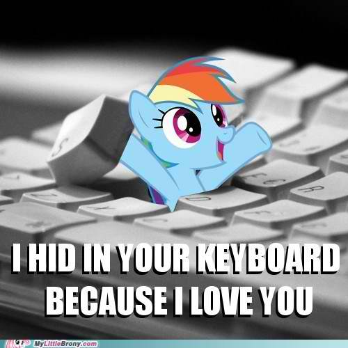 we wuv bạn too Dashie!!!