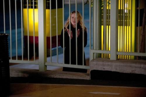 "1x14 ""Preschool Auction"" promotional 照片"