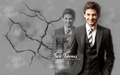 Ben Barnes Wallpaper - ben-barnes wallpaper