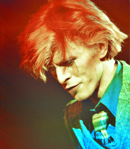 david bowie images bowie wallpaper and background photos