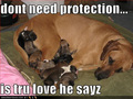 Don't need protection...  - nasty-jokes photo