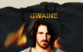Gwaine - gwaine wallpaper
