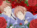 Hitachiin Twins<3 - hikaru-and-kaoru-hitachiin photo