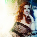 Marcia Cross - desperate-housewives fan art