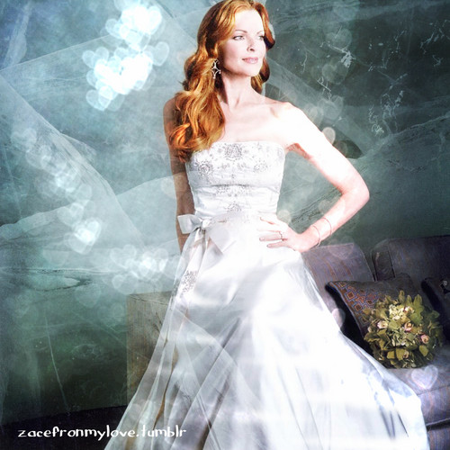 Desperate Housewives wallpaper probably with a gown, a bridal gown, and a bridesmaid titled Marcia Cross