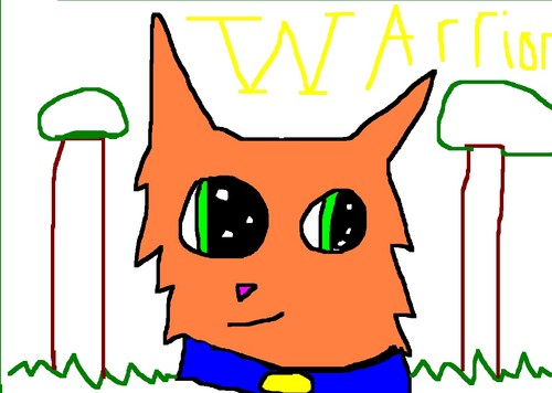 Warriors (Novel Series) wolpeyper probably containing anime called My drawing of Firestar